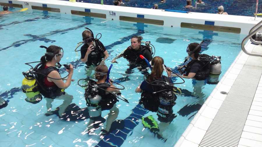 Scuba Divers in the pool