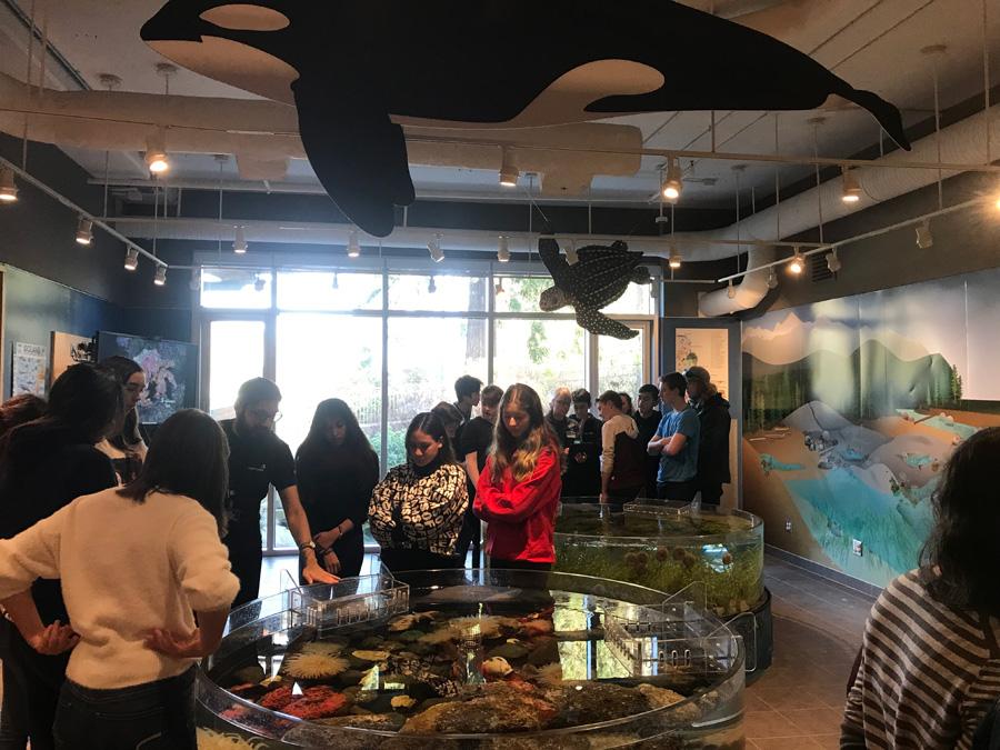 Students visit Vancouver Aquarium