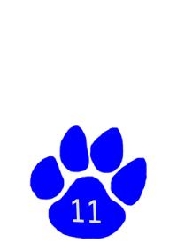 grade 11 paw
