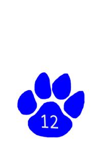grade 12 paw